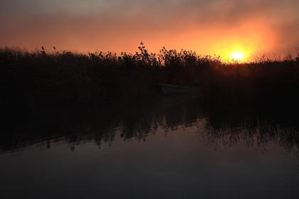 日の出(印旛沼)