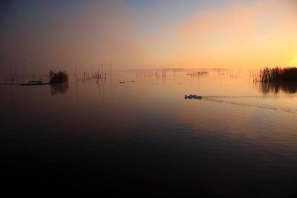 紅の沼(印旛沼)