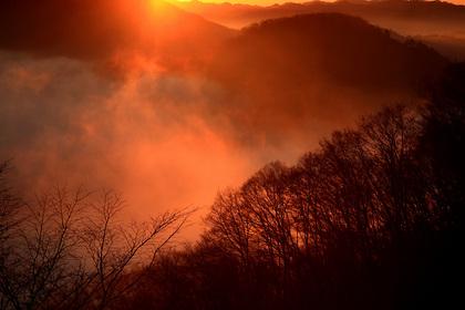 霧が燃える(茂木町・鎌倉山)