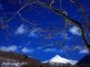冬景色 観音沼