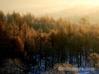 冬景色 裏磐梯
