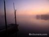 印旛沼 霧