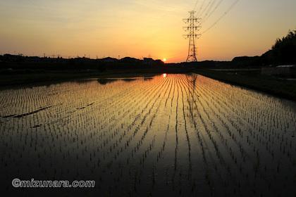 日没 田園風景