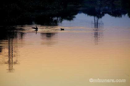 夕景 水辺