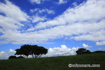 真夏日 雲