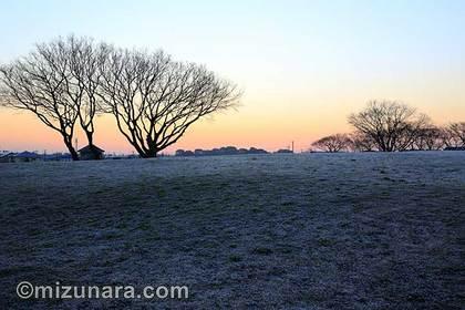 大晦日 霜