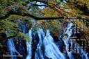 2017年11月 カレンダー壁紙 江竜田の滝 紅葉