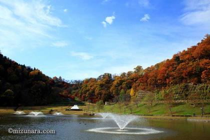 天童公園 紅葉