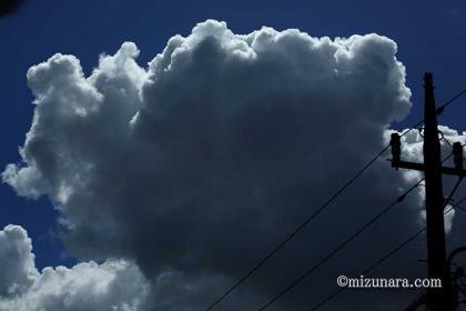 入道雲 雲