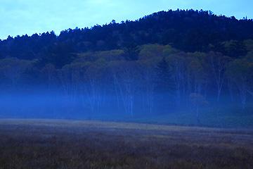大江湿原の早朝