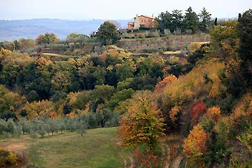 アグリ前に拡がる秋の風景
