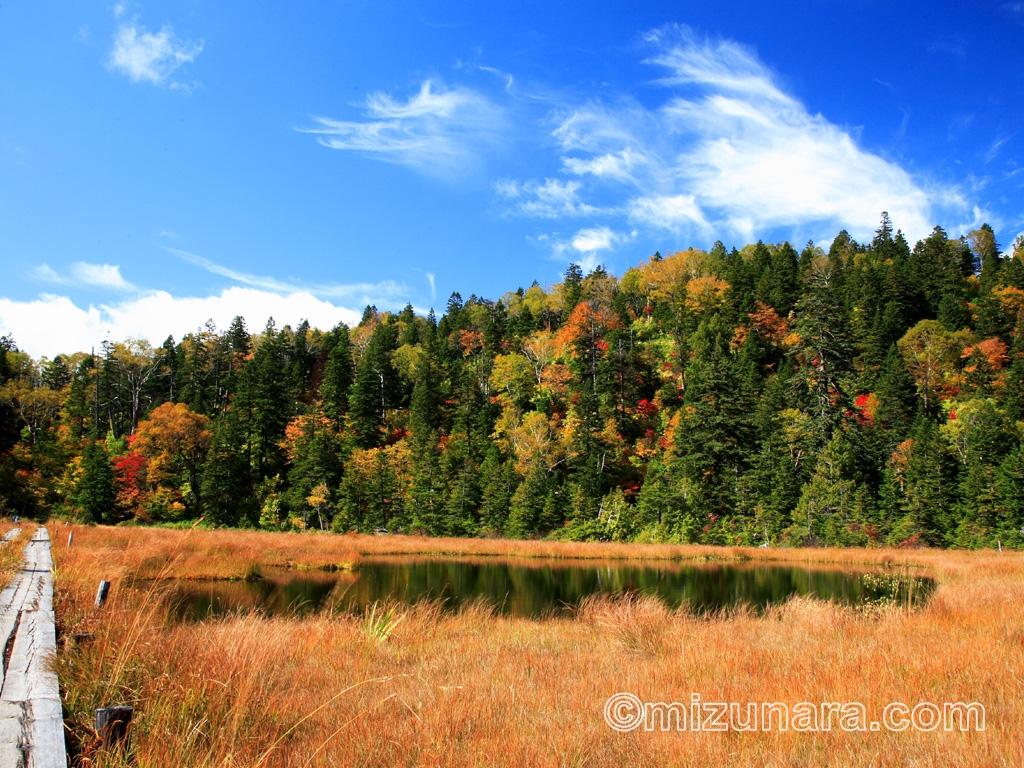 秋空の尾瀬